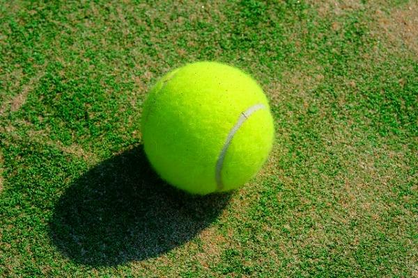 テニスボールダイエット